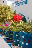 De potten van de geranium, Santorini, Griekenland Stock Afbeeldingen