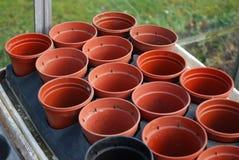 De potten van de installatie Royalty-vrije Stock Foto's