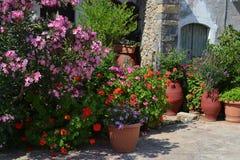 De potten van de installatie met bloemen in Griekenland. Stock Foto's
