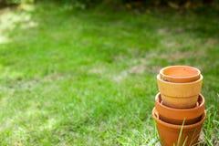 De potten van de terracottainstallatie Stock Afbeeldingen