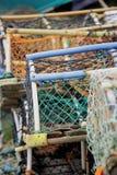 De potten van de zeekreeft Stock Fotografie
