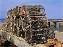 De potten van de zeekreeft Stock Foto