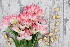 De Pâques toujours la vie Image stock