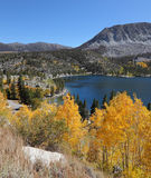 De prachtige Amerikaanse herfst Stock Foto's
