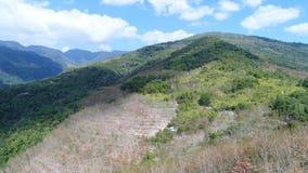 De prachtige bergen stock foto