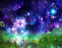 De prachtige bloem van Fairytale Royalty-vrije Stock Foto