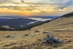 De prado de la ladera con el bosque y las nubes fotografía de archivo