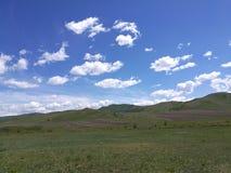 De prairie in de ochtend Stock Fotografie