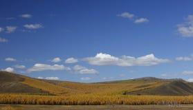 De prairie van de herfst Royalty-vrije Stock Foto