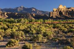 De prairie van de zonsondergang Royalty-vrije Stock Foto's
