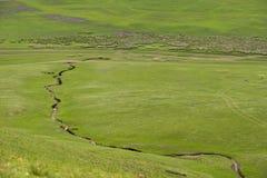 De prairie van Hulun Buir royalty-vrije stock foto's