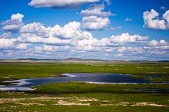 De Prairie van Hulunbuir stock foto's