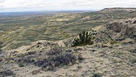 De prairie van Wyoming. Stock Foto's