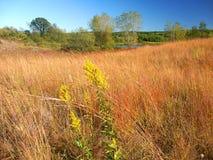 De Prairielandschap Wisconsin van de ketelmorene Stock Afbeelding
