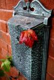 De Prentbriefkaar van de herfst Royalty-vrije Stock Foto's
