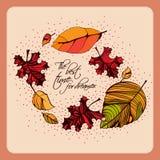 De prentbriefkaar van de herfst Rood - gele esdoornbladeren en gele aartjes Royalty-vrije Stock Foto's