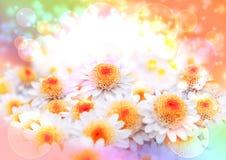 De prentbriefkaar van de lente stock fotografie