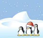 De Prentbriefkaar van de pinguïn Stock Foto