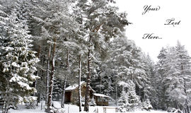 De prentbriefkaar van de winter Stock Fotografie