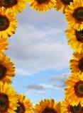 De prentbriefkaar van de zomer stock afbeelding