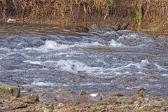 ` de pressa da água do ` Imagem de Stock