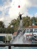 De prestaties van de dolfijn royalty-vrije stock foto's