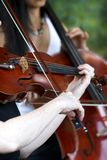 De prestaties van de viool Royalty-vrije Stock Foto's