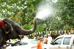 De pret van de olifant in waterfestival. Royalty-vrije Stock Afbeelding