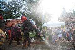De pret van de olifant in waterfestival. Stock Foto
