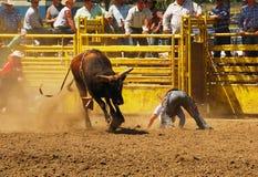 De Pret van de rodeo Stock Afbeeldingen