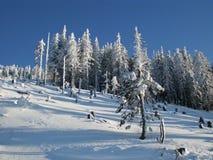 De pret van de ski in bergen Franse Alpen stock foto's