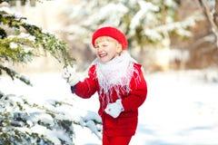 De pret van de winter Royalty-vrije Stock Fotografie