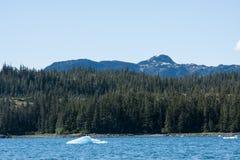De Prins William Sound van Alaska Stock Fotografie