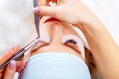 De Procedure van de wimperuitbreiding Het oog van de vrouw met lange wimpers De zwepen, sluiten omhoog, geselecteerde nadruk stock afbeelding