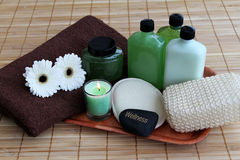 De producten van de lichaamsverzorging Royalty-vrije Stock Afbeelding