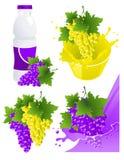 De producten van de wijnstok Royalty-vrije Stock Foto's