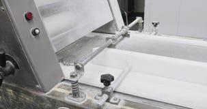 De productie van de bakkerijtransportband stock video