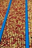 De productie van de appel stock foto's