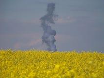De productie van de biodiesel Stock Foto