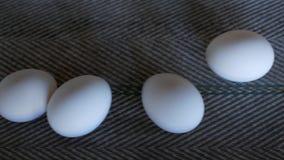 De productie van kippeneieren, gevogelte, kippeneieren gaat door de transportband voor het verdere sorteren, close-up, de industr stock video