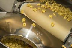 De productielijn van Tortellinideegwaren Royalty-vrije Stock Foto