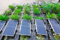 De productietechnologieën die zij aan elektriciteit met duurzame zonnecellen hebben gewerkt developmen stock afbeelding