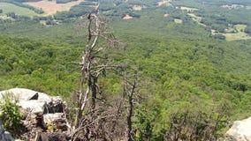 De proefgang van Mountain Look uit Stock Afbeelding