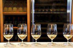 De proevende glazen van de wijn Royalty-vrije Stock Foto