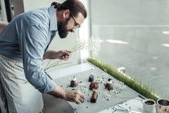 De professionele bakker die van Nice de plaat met cakes bekijken stock afbeeldingen