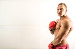 De professionele bokser fighthing royalty-vrije stock foto's