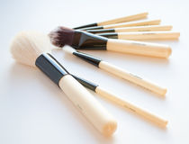 De professionele reeks van de make-upborstel Stock Afbeeldingen