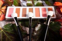 De professionele schoonheidsmiddelen maken omhoog prducts in de herfstconcept op donkere houten achtergrond stock afbeeldingen