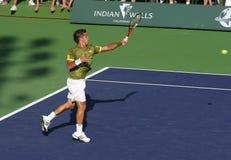 De professionele Speler van het Tennis. stock foto's