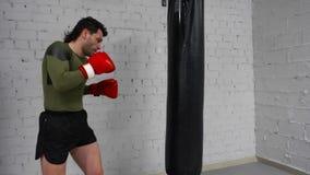 De professionele vechter leidt in een gymnastiek op uitoefenend sommige schoppen en stempels met ponsenzak stock video